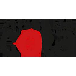 Assistenza tecnica autorizzata Rovigo marchio Anselmo Cola